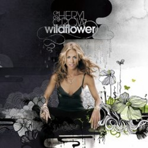 previous studio album: Wildflower (2005)